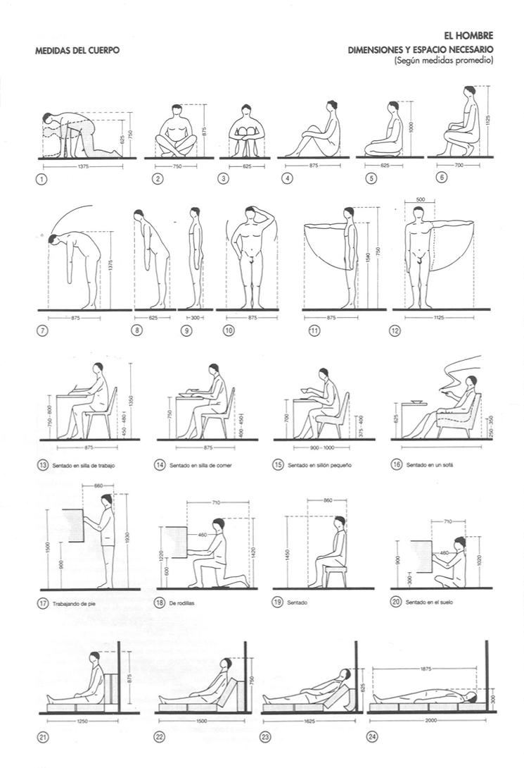Cuerpos Des Normalizados Arquine